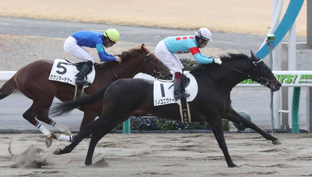 【新馬/中京4R】リノユニヴァースがデビューV!全兄はグレンツェント