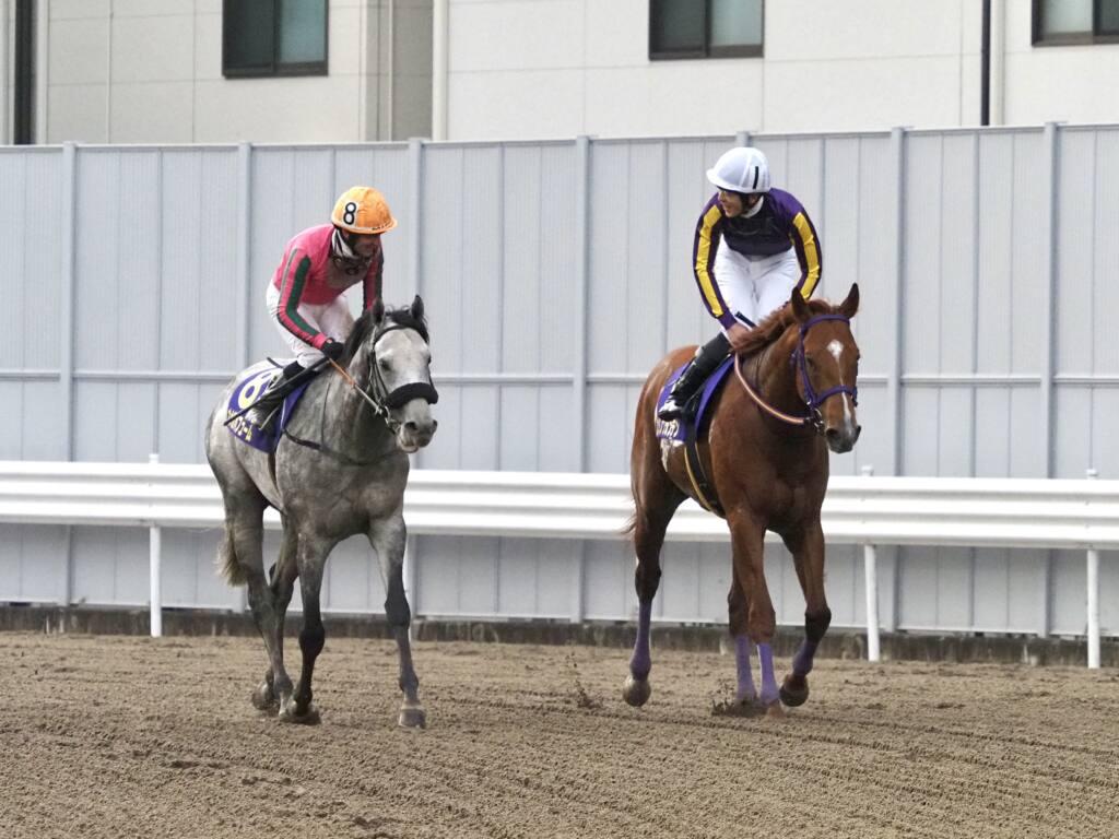 【川崎記念】デムーロ「反応良くなかった」レース後ジョッキーコメント