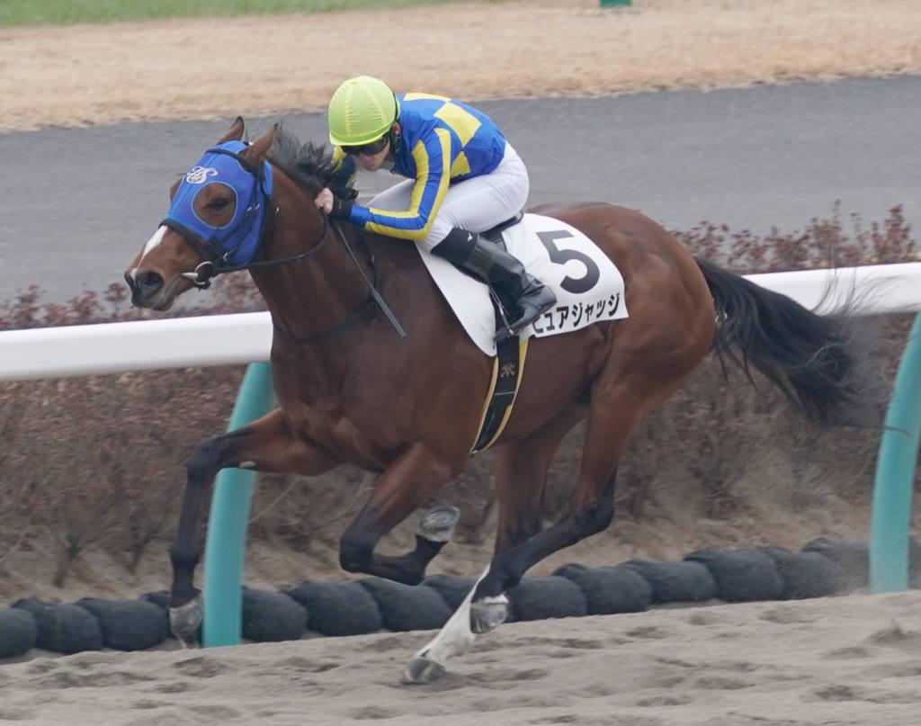 【中山1R】田辺裕信騎乗のラストサムライが初笑い