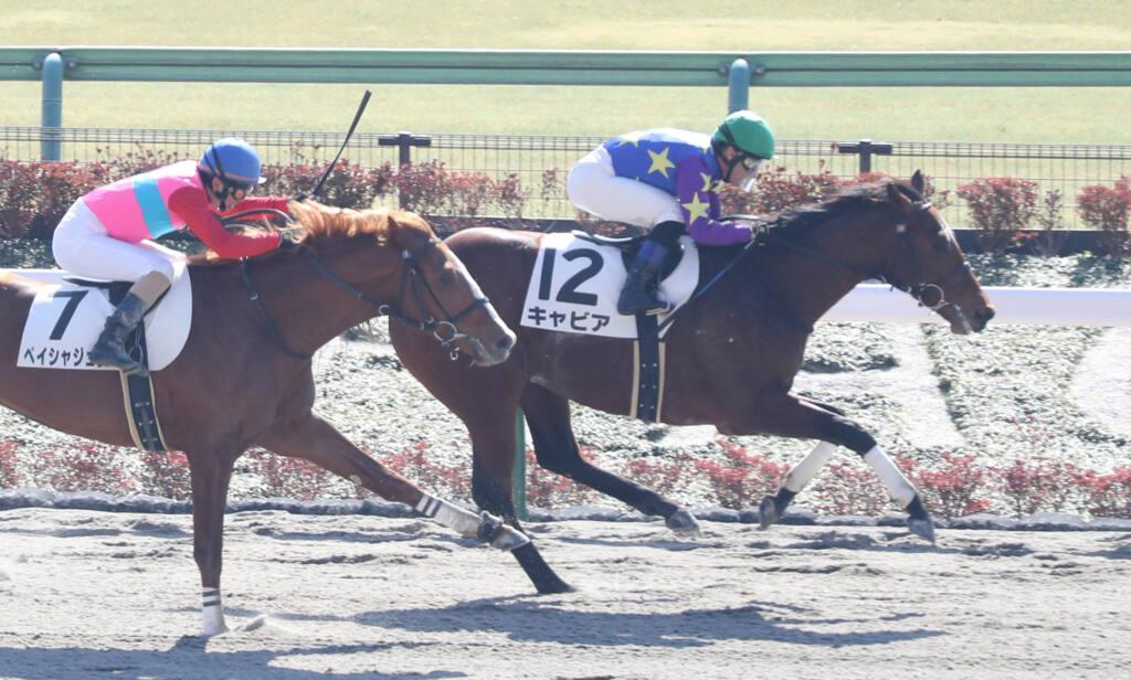 【新馬/東京4R】リアルインパクト産駒 キャビアがデビューV