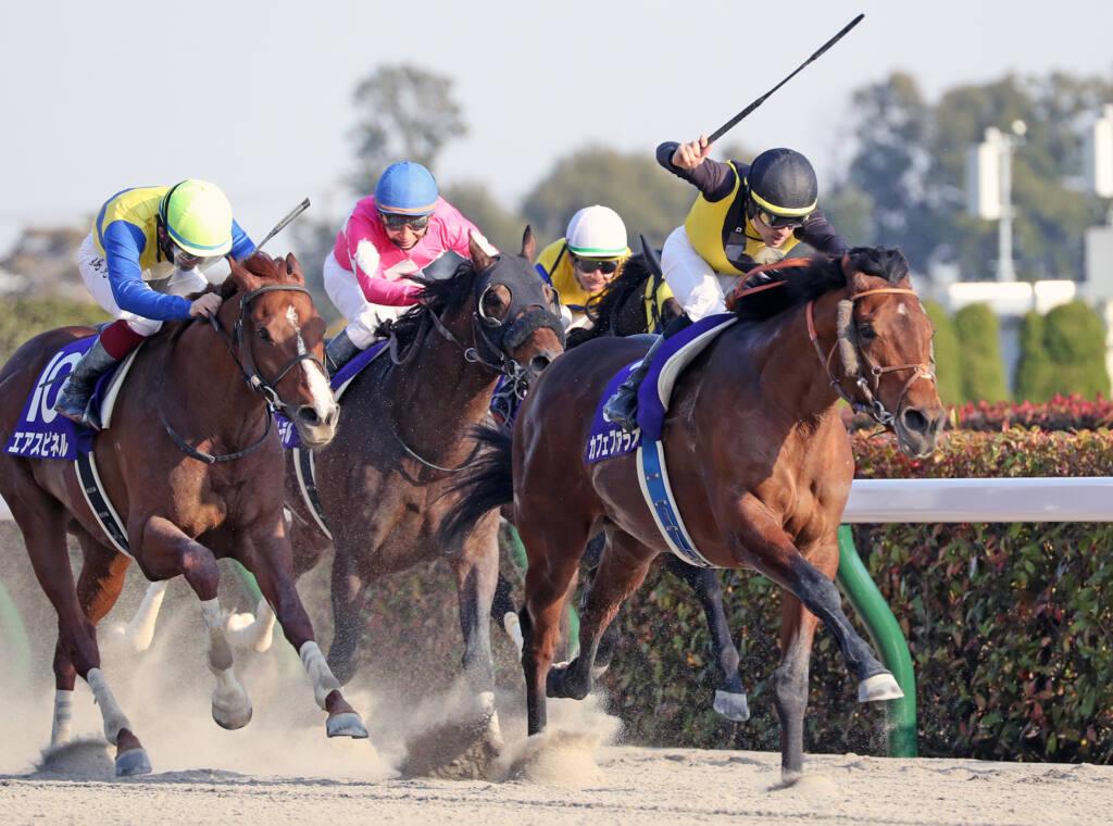 【フェブラリーS】武豊「折り合えば更に伸びた」レース後ジョッキーコメント