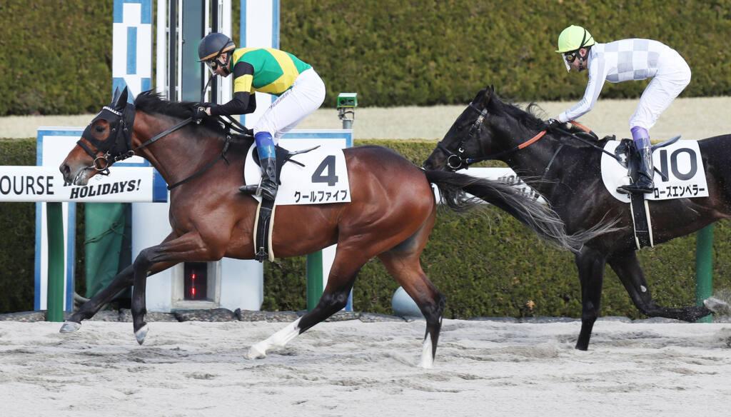 【阪神2R】ケイアイロベージが7馬身差圧勝!