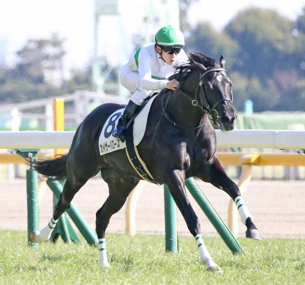 【新馬/東京6R】ディープインパクト産駒 カイザーバローズがデビューV