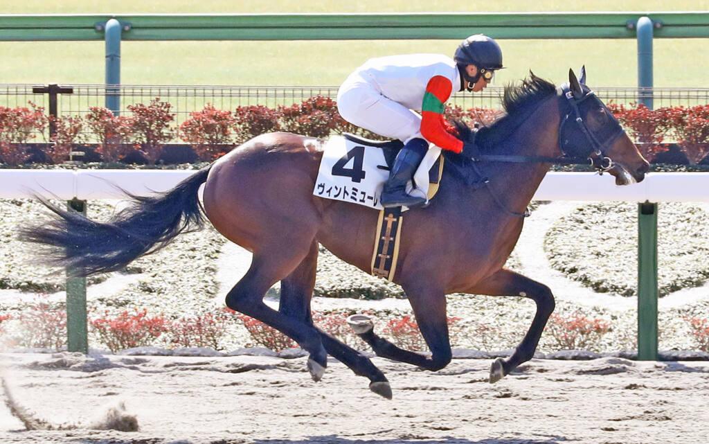 【新馬/東京3R】オルヴェーヴル産駒 ヴィントミューレがデビューV