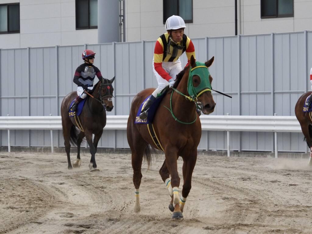 【エンプレス杯】森泰斗「内枠だと競馬がしづらい」マドラスチェックは3着