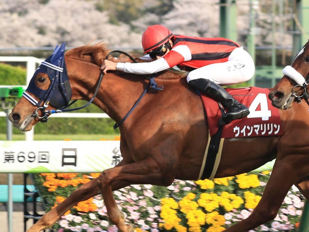 【日経賞】横山武「結果を残したいという一心」ウインマリリンが重賞2勝目