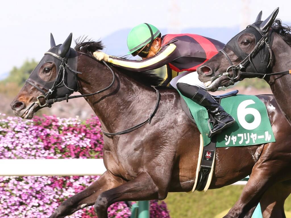 松山弘平が騎乗停止、日経賞での制裁