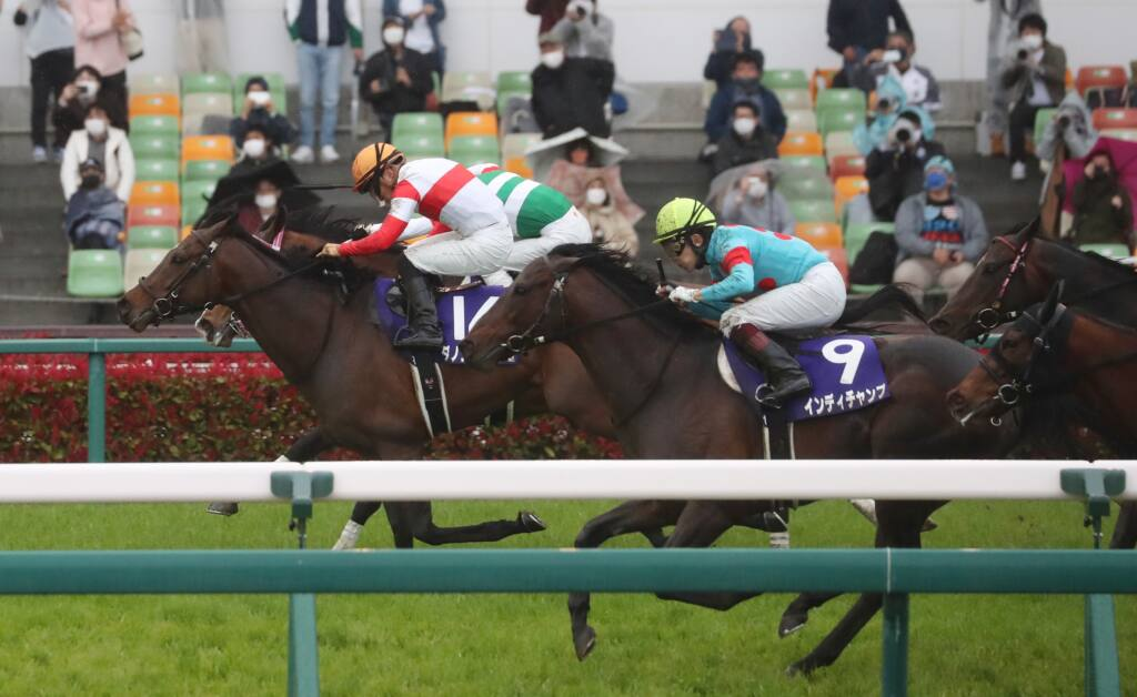 2021香港チャンピオンズデー 日本馬の近況(4月23日)