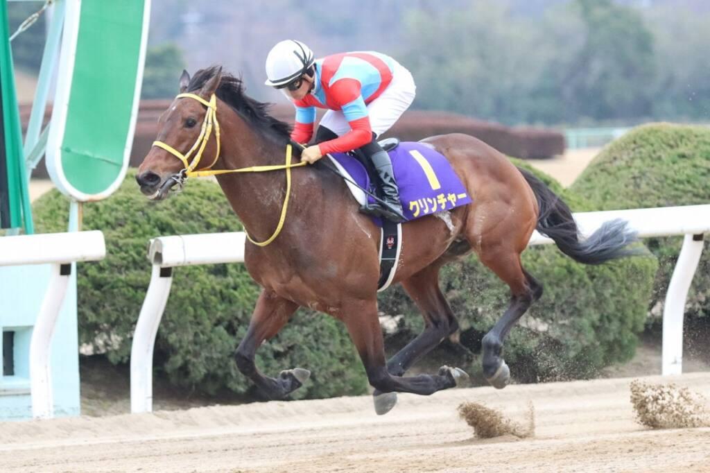 【名古屋大賞典】JRA出走予定馬