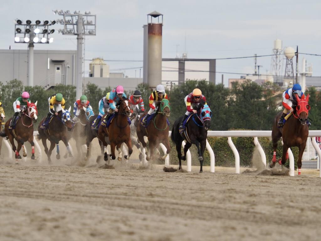 【エンプレス杯】川田「きっちり捕まえてくれた」レース後ジョッキーコメント