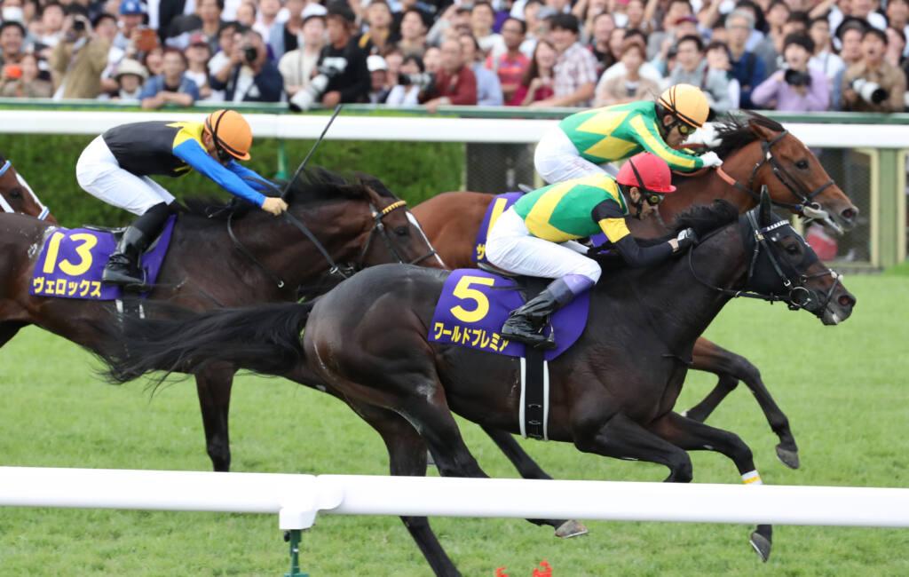 【日経賞登録馬】ワールドプレミアなど19頭が登録