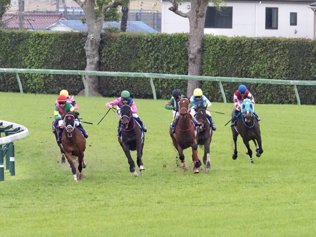 リオンリオンが競走馬登録抹消