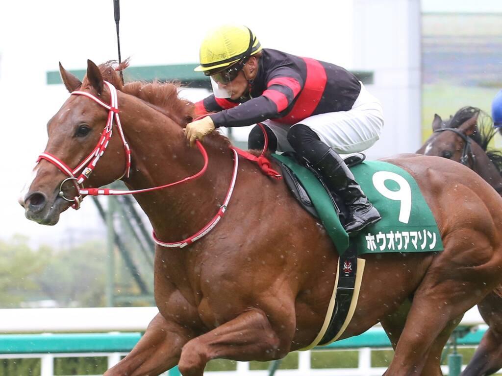 【アーリントンC】川田「良い馬に成長」ホウオウアマゾンが重賞初制覇