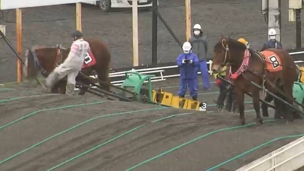 ばんえい競馬 馬の顔を蹴って抗議殺到 当該騎手は当面騎乗自粛を申し出