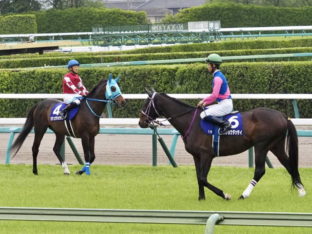 【中山GJ】森一馬「楽な競馬ではなかった」メイショウダッサイがV