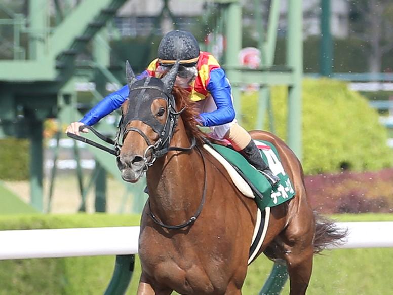 【アンタレスS】松若「馬の能力を信じて」テーオーケインズが完勝