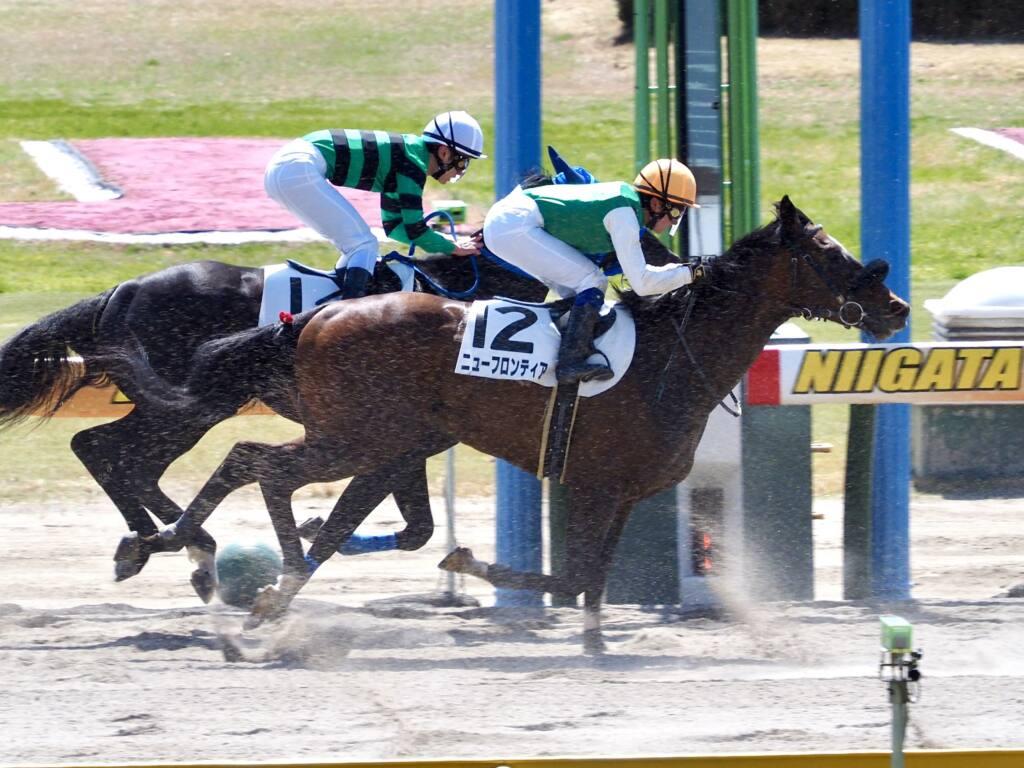 【新潟3R】女性騎手3人が初競演!最先着は古川奈穂騎手