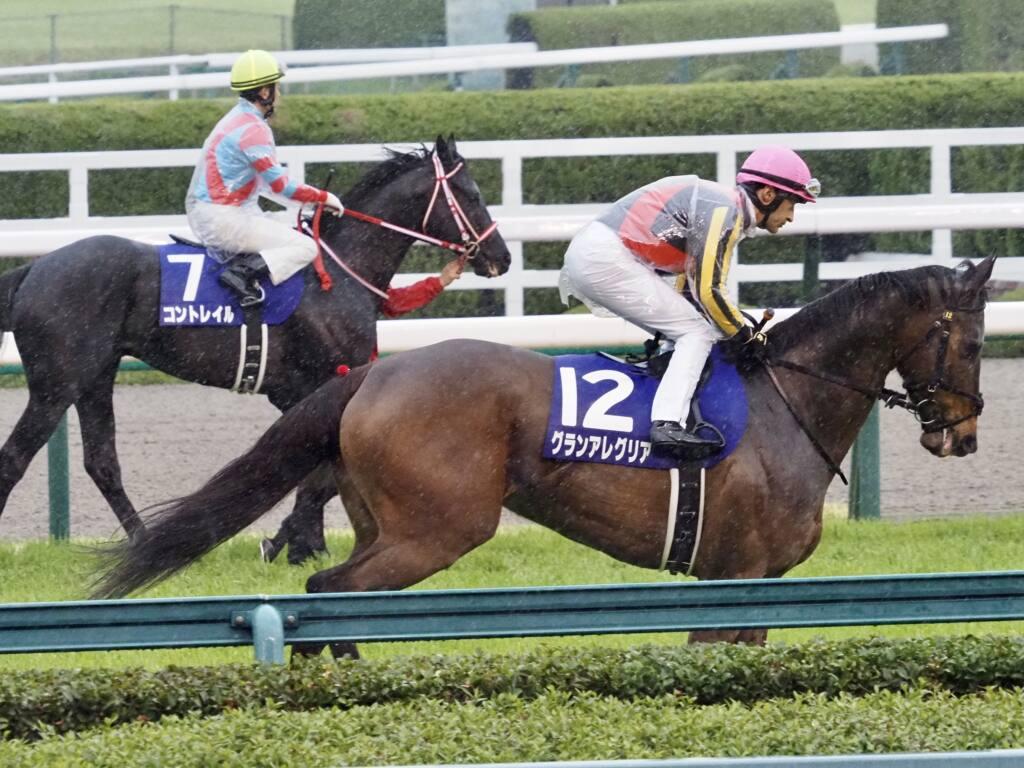 【大阪杯】ルメール「良馬場なら」レース後ジョッキーコメント
