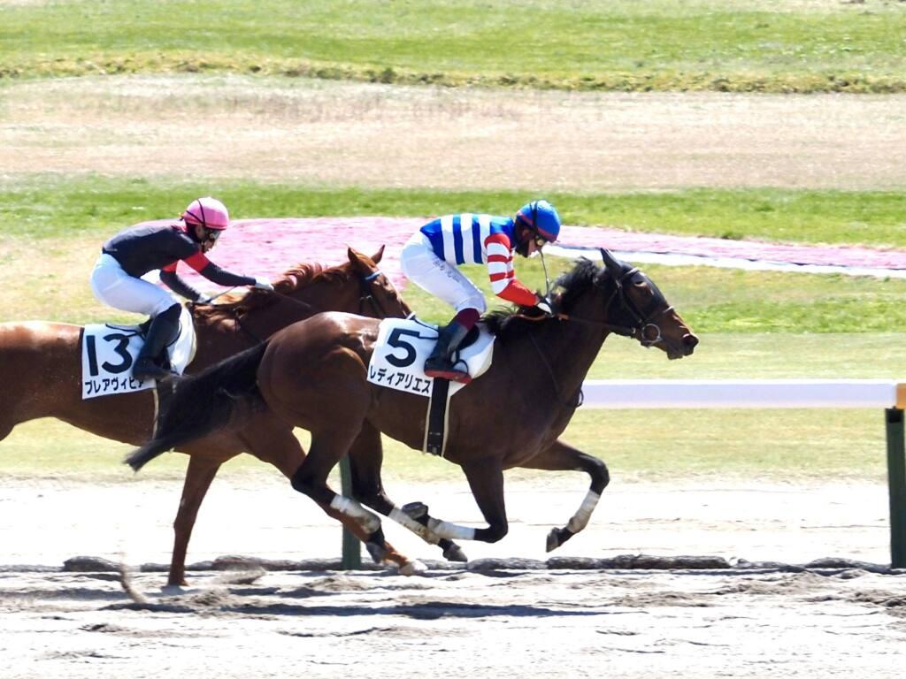 【新潟4R】女性騎手競演、2レース目は古川9着、菜七子11着、永島12着
