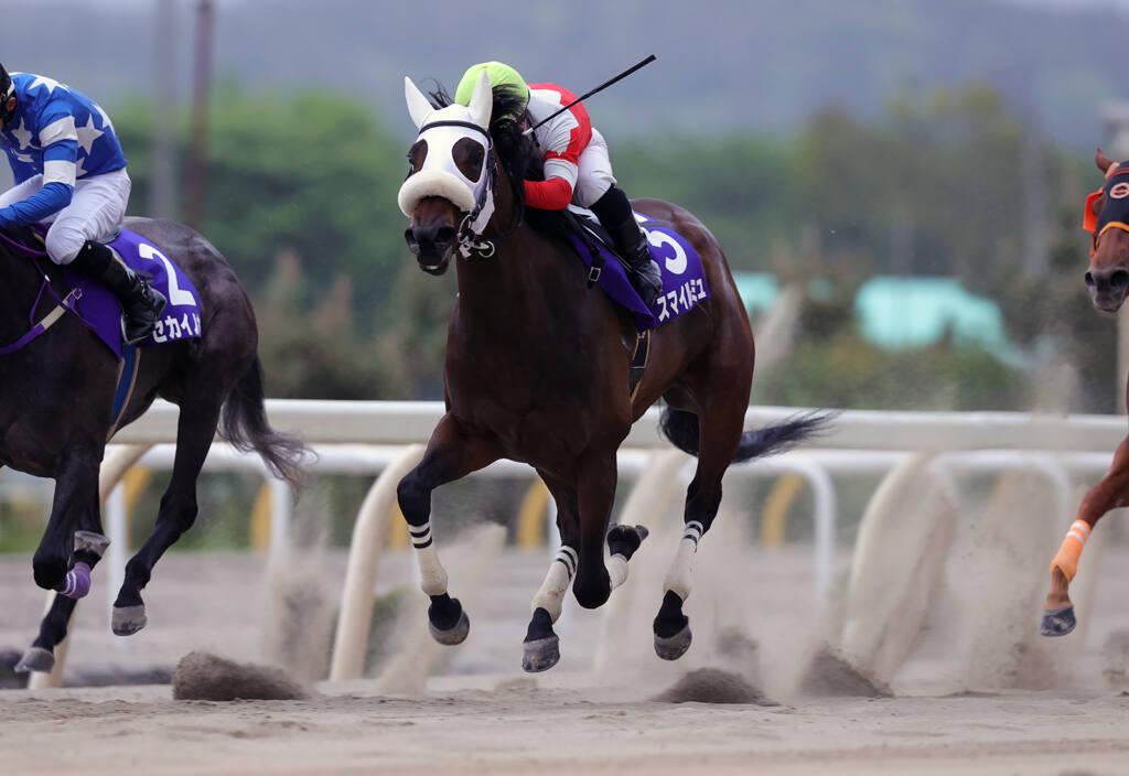 【水沢・留守杯日高賞】スマイルミュがゴール前の叩きあいを制しクビ差で勝利