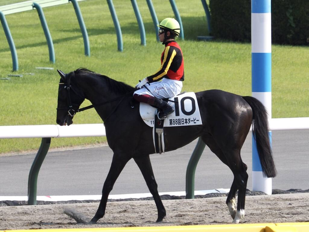 【白百合S】セファーラジエルが4馬身差完勝
