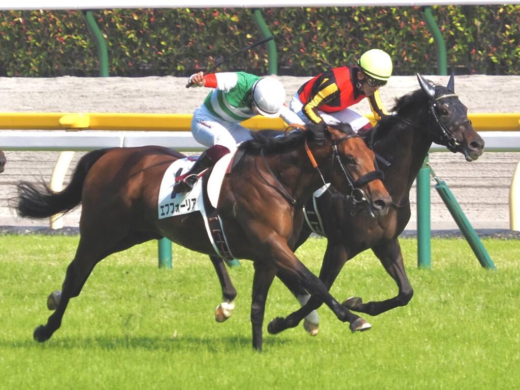【日本ダービー】横山武「申し訳ないです」レース後ジョッキーコメント