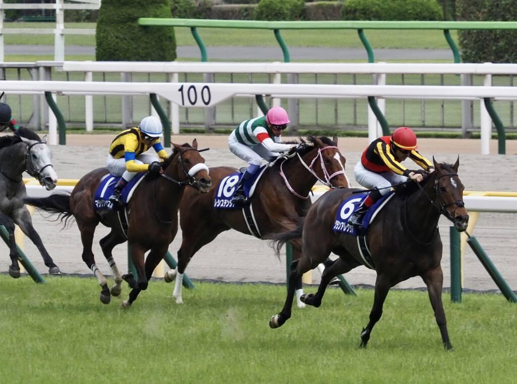 【オークス登録馬】ソダシなど21頭が登録