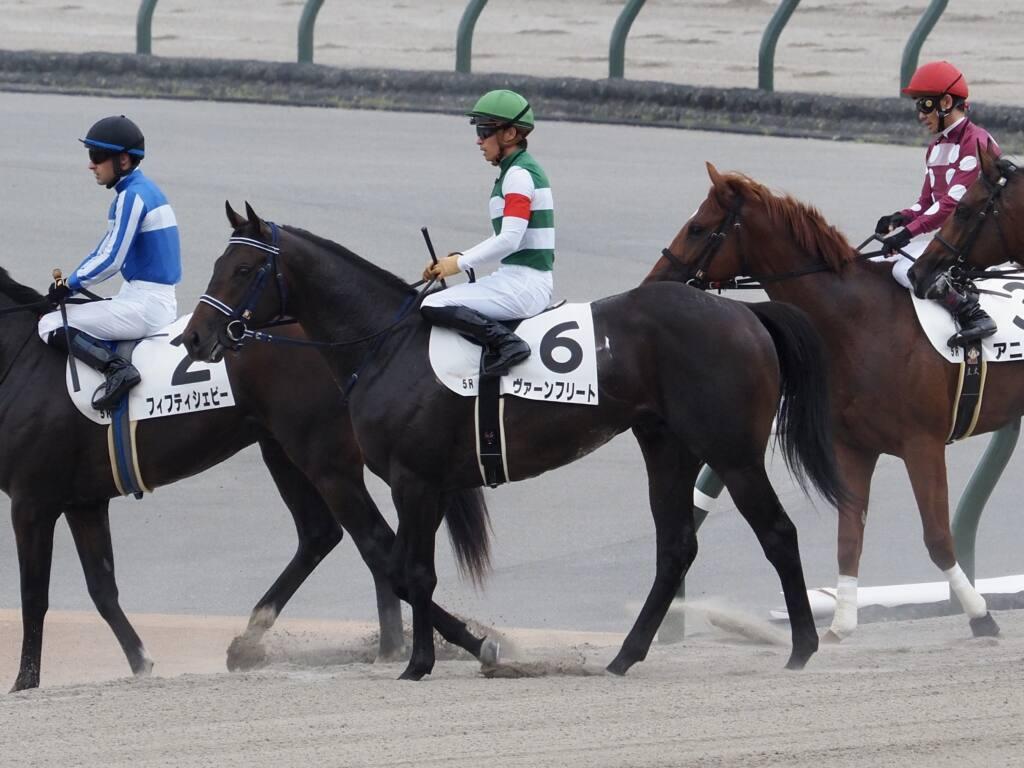 【新馬/東京5R】リオンディーズ産駒 ヴァーンフリートがデビューV