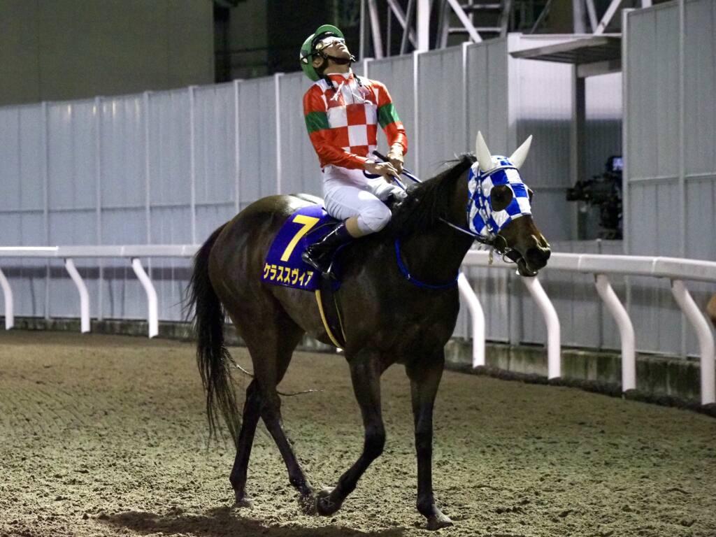 スズカデヴィアスが競走馬登録抹消