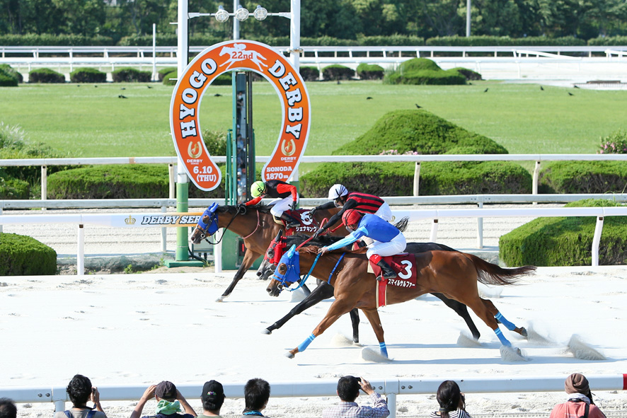 【関東オークス】JRA出走予定馬