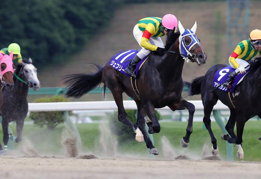 【帝王賞】JRA出走予定馬