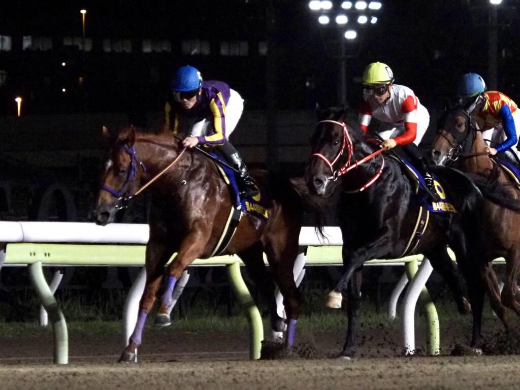 【帝王賞】デムーロ「進んでいかなかった」レース後ジョッキーコメント