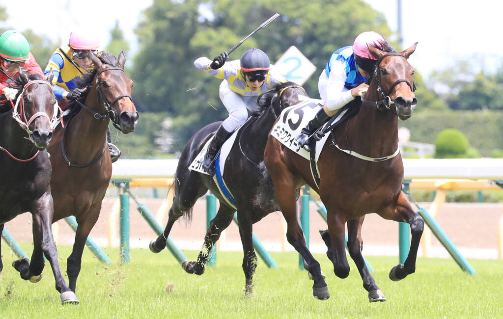 【東京7R】ルコルセールがダートで2連勝