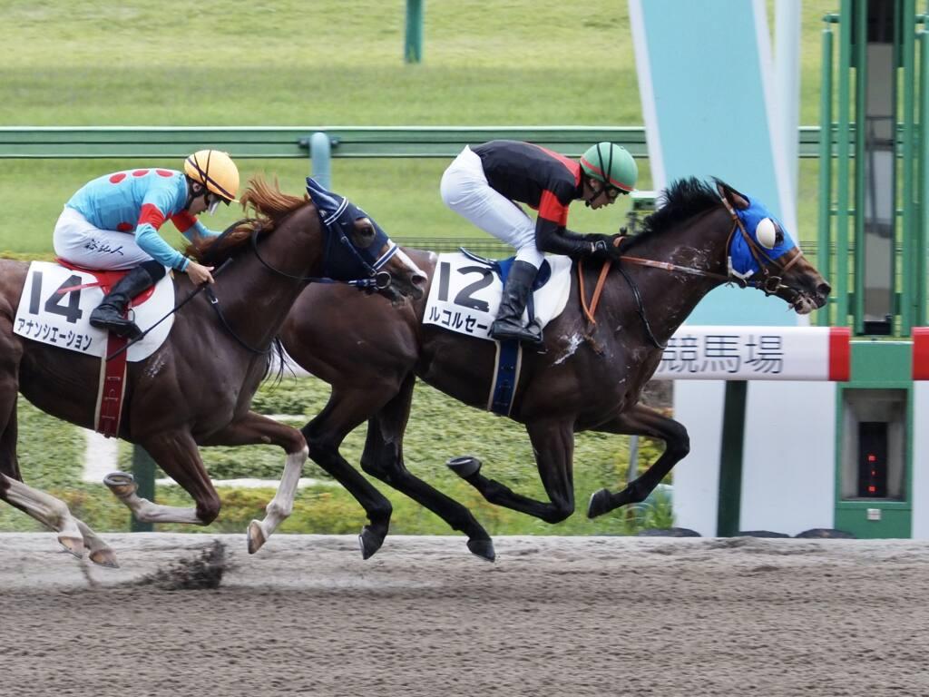 【東京7R】石橋脩「本当に強い競馬」ルコルセールが2連勝