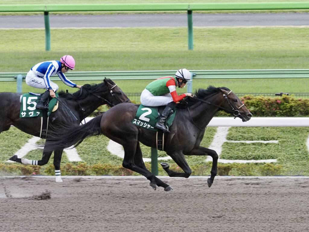 WIN5は2000万円超え!