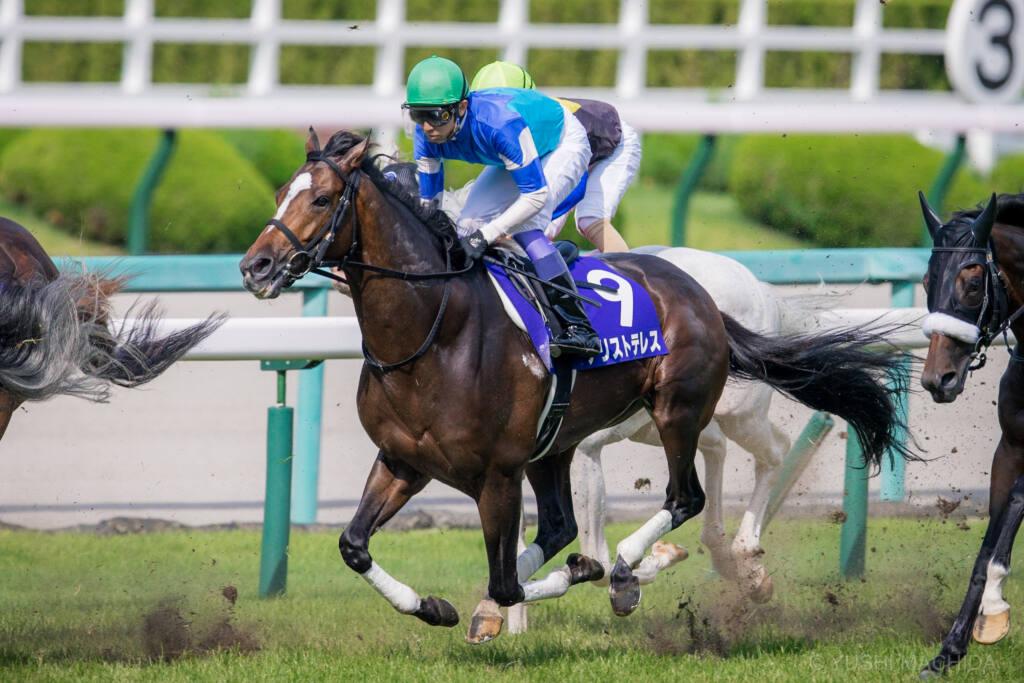 【宝塚記念】川田「よく我慢して走ってくれました」レース後ジョッキーコメント