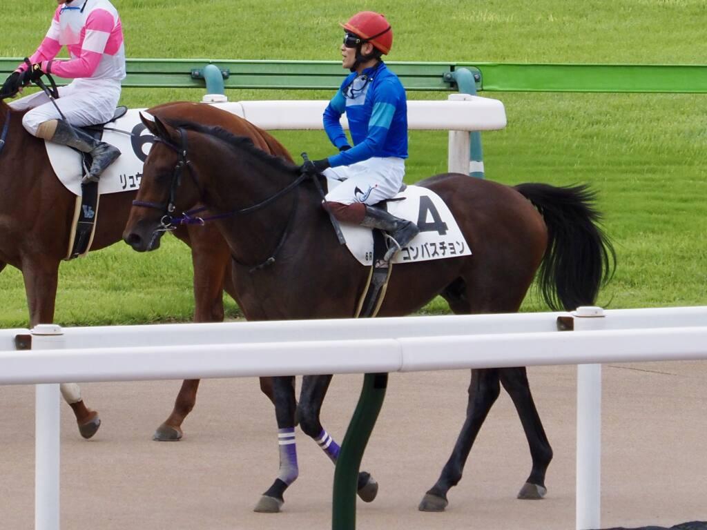 【新馬/東京6R】コンバスチョンが4馬身差完勝!人気に応える