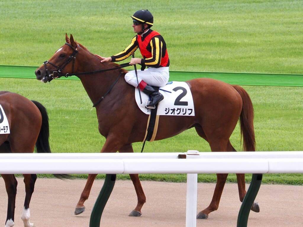【新馬/東京5R】ドレフォン産駒 ジオグリフが快勝