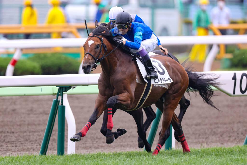 【新馬/函館5R】キズナ産駒 エクラノーブルが5馬身差完勝