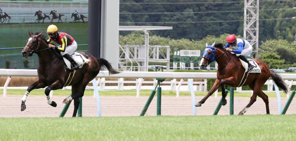【新馬/小倉5R】ハーツクライ産駒 グーデンドラークがデビューV