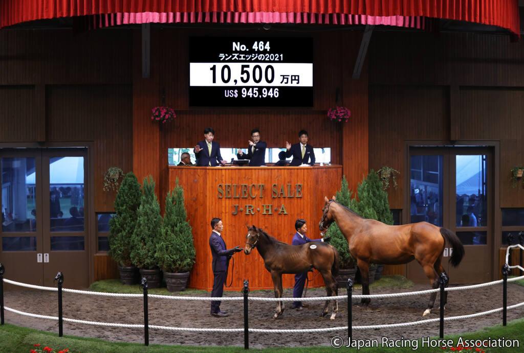 【セレクトセール2021】ブリックスアンドモルタル産駒が1億円超え