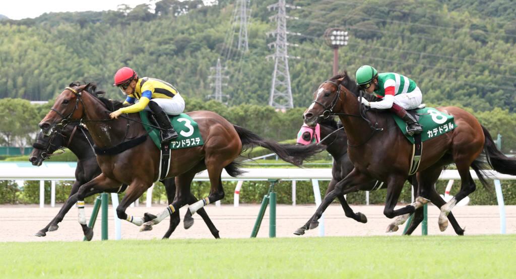 【函館記念】トーセンスーリヤが完勝!重賞2勝目