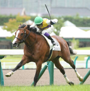 【新馬/福島5R】ゴールドシップ産駒 ウインピクシスがデビューV