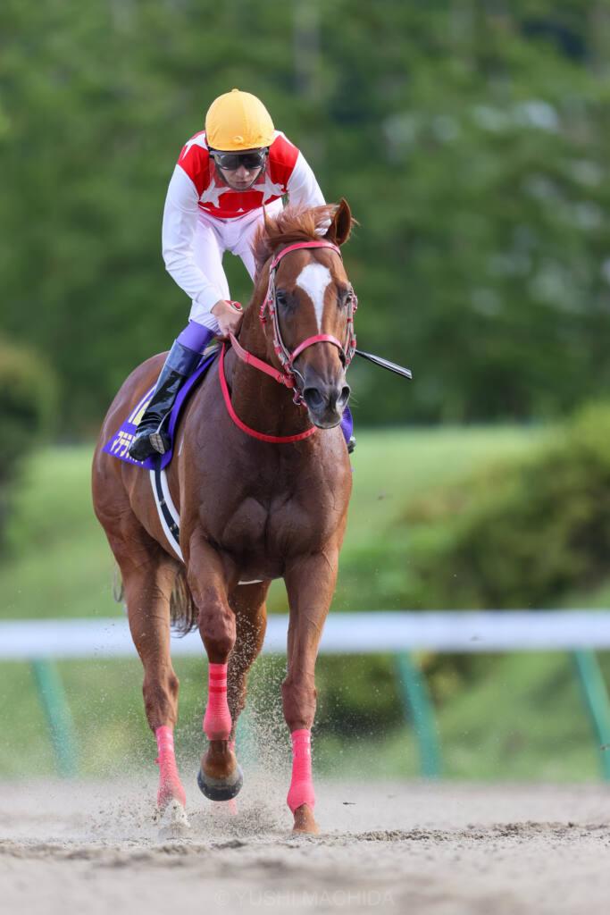 【クラスターC】武豊「馬の息が苦しくなって…」レース後ジョッキーコメント