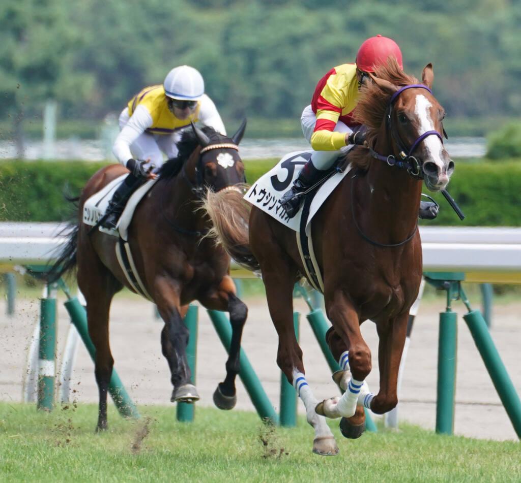 【新馬/新潟5R】ビッグアーサー産駒 トウシンマカオがデビューV