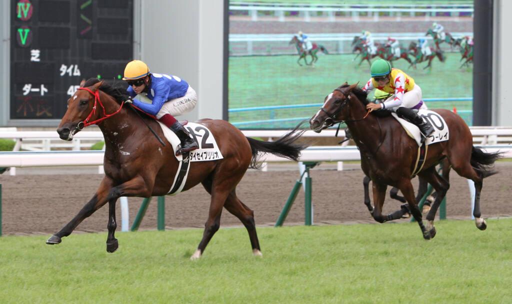 【新馬/小倉5R】ディープブリランテ産駒 タイセイブリリオが逃げ切る