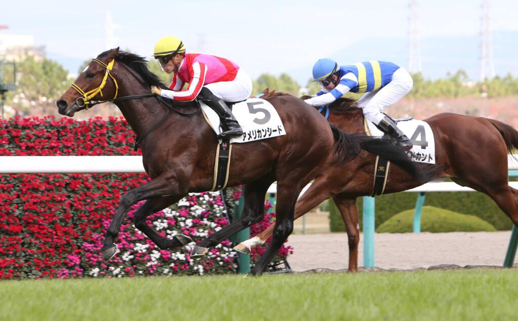 【レパードS登録馬】メイショウムラクモなど22頭登録