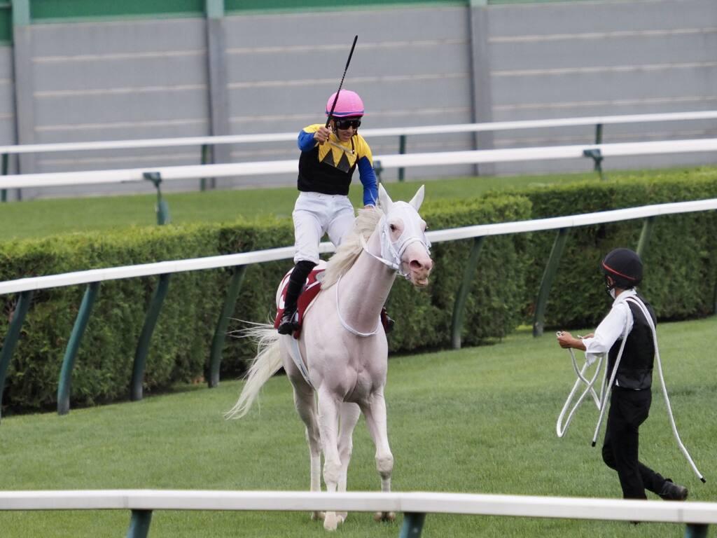 【札幌記念】吉田隼「ソダシらしい競馬をしてくれた」ソダシが古馬撃破