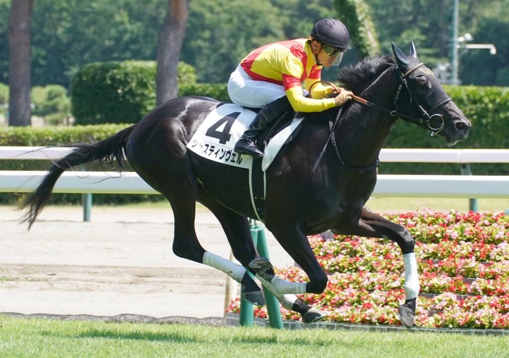 【新馬/新潟6R】ドゥラメンテ産駒 ジャスティンヴェルが5馬身差圧勝