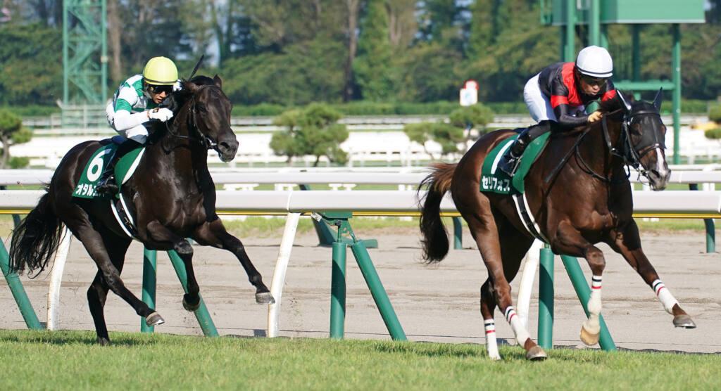 【キーンランドC】強い3歳牝馬!レイハリアが抜け出してV